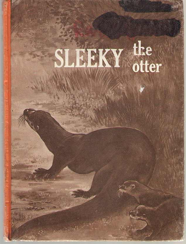 Image for Sleeky The Otter