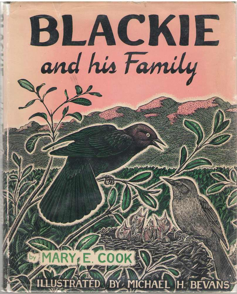 Image for Blackie And His Family
