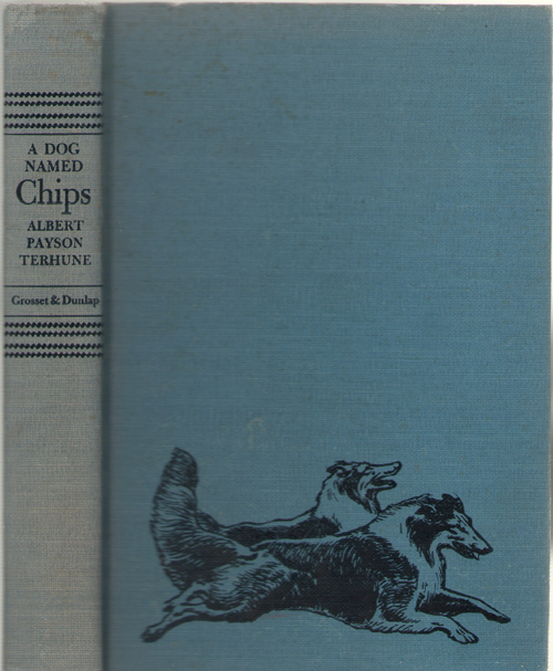 A Dog Named Chips The Life and Adventures of a Mongrel Scamp, Terhune, Albert Payson