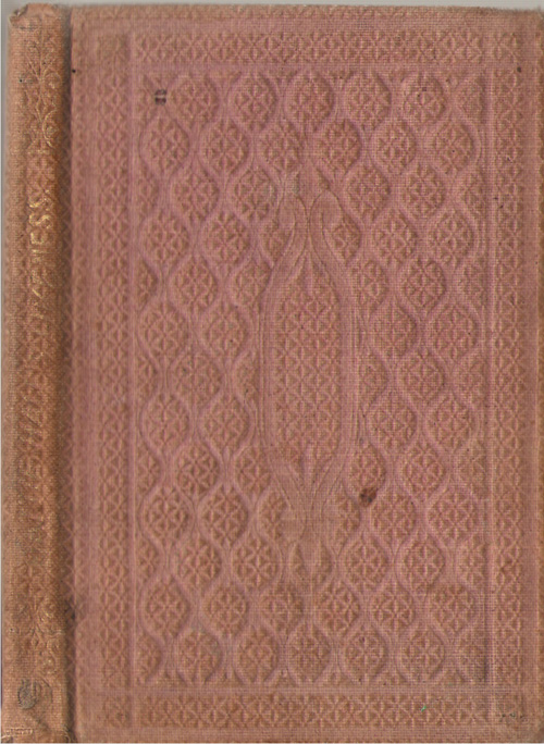 Hattie Hale's Likeness, And What it Taught Her, Felter, John D. (Illustrator)