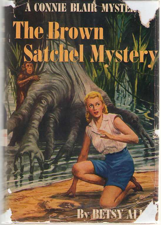 The Brown Satchel Mystery, Allen, Betsy