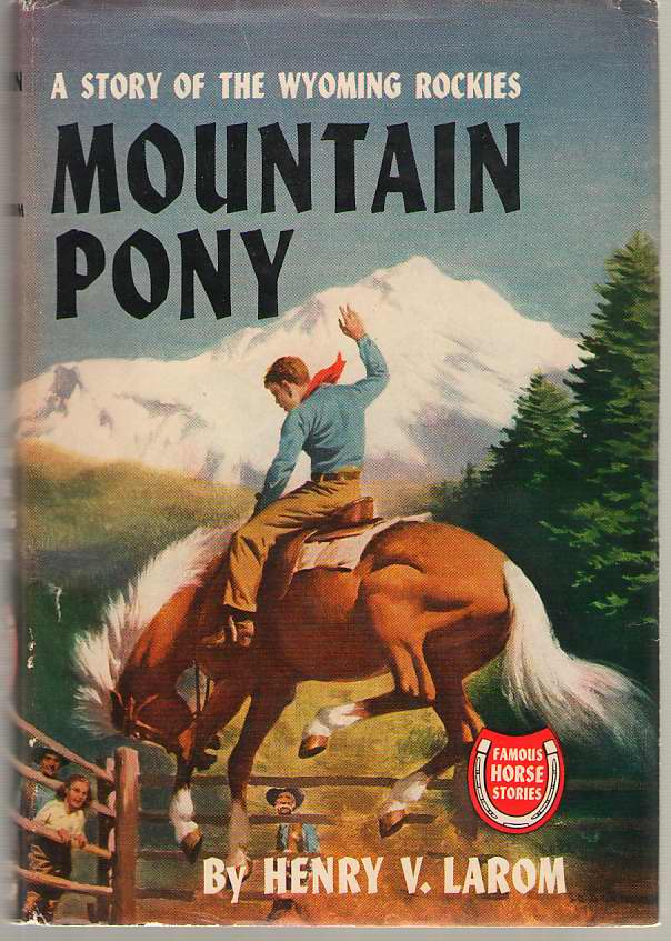Image for Mountain Pony A Story of the Wyoming Rockies