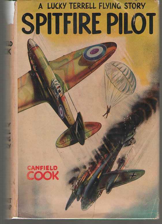 Image for Spitfire Pilot