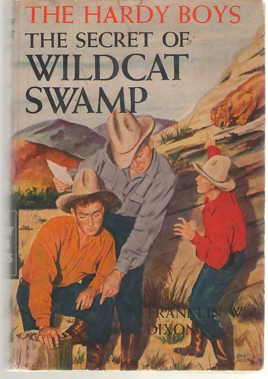 Image for The Secret Of Wildcat Swamp