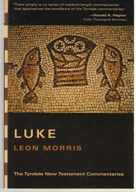 Image for The Gospel According to Luke An Introduction and Commentary
